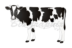 41_Animals Cow