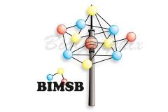 01_Logos Logo BIMSB B