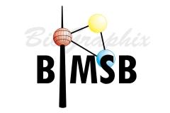 03_Logos Logo BIMSB D