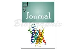 04_MISC_Journal