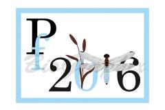 05_PF_PF2016-Dragonfly